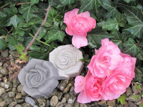 Beton Rose grau als Dekoration
