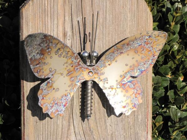 edelstahl schmetterling zum h ngen 22 cm angels garden dekoshop. Black Bedroom Furniture Sets. Home Design Ideas