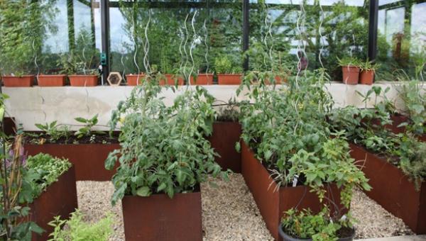 Edelrost Hochbeet aus Metall, 160x60x50 - Angels Garden ...